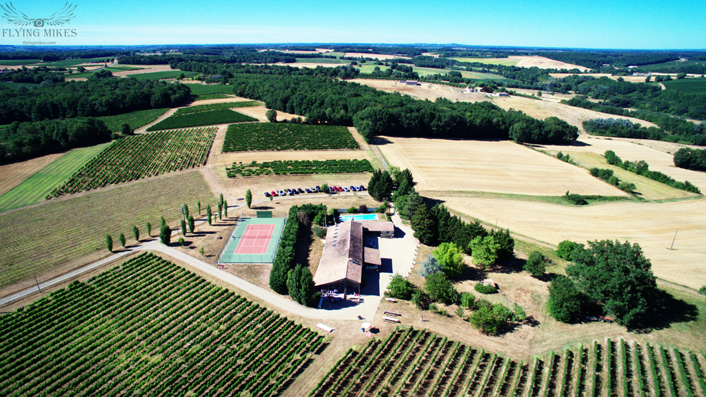 Chateau Grand Pierre - Cotes Duras - Vineyard Holidays, Vineyard Weddings and Events, Vineyard Tours